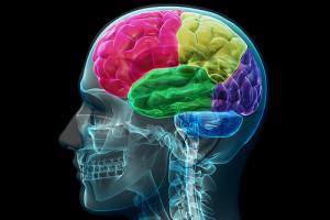 Kognitivni trening
